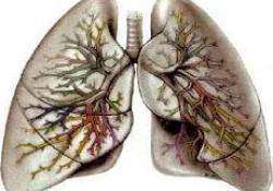 "Cell Death Diff:iASPP可通过抑制细胞铁死亡来减轻肠道局部缺血/再<font color=""red"">灌注</font>诱发的急性肺<font color=""red"">损伤</font>"