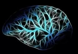 "Neurology:长期IVIg期间应该警惕<font color=""red"">血栓</font>事件"