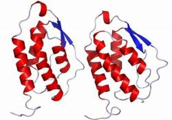 "rhGM-CSF治疗COVID-19<font color=""red"">低氧</font>性呼吸衰竭:临床试验即将在欧洲多国开展"
