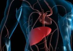 "J hepatology:熊去氧胆酸<font color=""red"">预防</font><font color=""red"">性</font>治疗对原发性胆源<font color=""red"">性</font>胆管炎的长期影响"