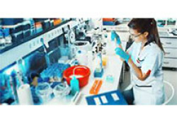 """Clinica Chimica Acta:组织激肽酶是一种潜在的预测动脉瘤性蛛网膜<font color=""""red"""">下</font><font color=""""red"""">腔</font>出血延迟性脑缺血的血清生物标志物?"""