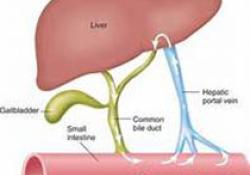 "Diabetologia:预测1型<font color=""red"">糖尿</font><font color=""red"">病</font>患者肾脏疾病的进展"
