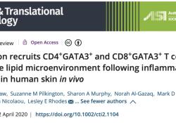 "<font color=""red"">Clinical</font> & Translational Immunology:紫外线晒伤后,我们的皮肤是如何自愈的?"