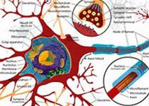 JAMA Neurol:新冠肺炎患者神经学症状研究