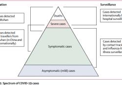 "Lancet:不同年龄<font color=""red"">段</font>的COVID-19病死率"