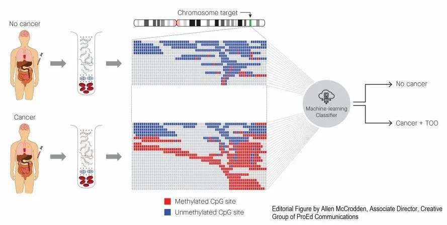 ESMO: 新型血液測試可實現50多種癌癥早發現、早定位