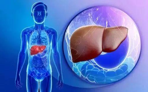 JAMA:综述:非酒精性脂肪性肝炎