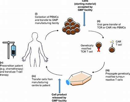 中國MNPA批準細胞療法GC007g治療CD19陽性復發難治B細胞急性淋巴細胞白血病的IND