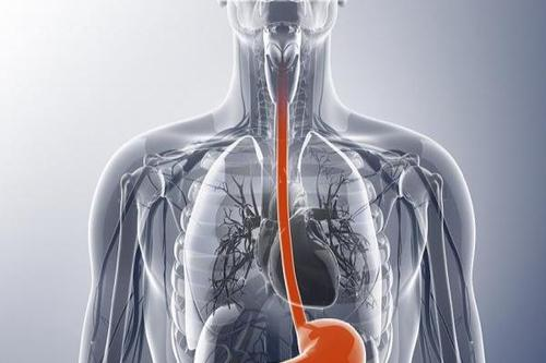 J Gastroenterology:食管癌切除后头颈部癌症率升高