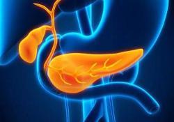 "Clin Gastroenterology H:长期奥贝胆酸治疗可改善原发性胆源<font color=""red"">性</font>胆管炎患者的<font color=""red"">组织</font><font color=""red"">学</font>终点"