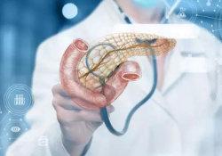 """Gastroenterology:<font color=""""red"""">内</font><font color=""""red"""">镜</font>超声引导下胰腺囊肿穿刺不需要抗生素预防"""
