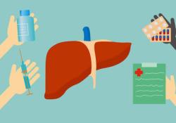 IBD:炎性肠病患者肝移植后行生物治疗的安全性分析
