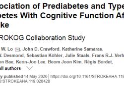 """Stroke:最新的美国研究,2型糖尿病会导致中风后<font color=""""red"""">认知</font><font color=""""red"""">能</font><font color=""""red"""">力</font>的下降"""