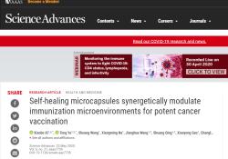 "Sci Adv:中国研究人员使用新型微胶囊研制出了高<font color=""red"">性能</font>癌症疫苗"