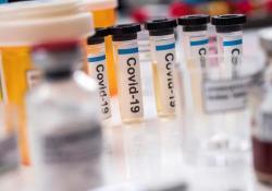 """全球群雄逐鹿疫苗<font color=""""red"""">研发</font>,Nature刊发新冠中和抗体研究助推<font color=""""red"""">研发</font>进程"""