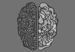 """CELL STEM CELL:脂<font color=""""red"""">质</font>代谢首次被发现可以控制大脑发育"""