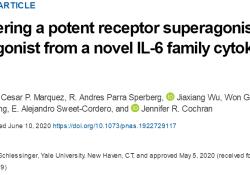 "PNAS:<font color=""red"">斯坦</font>福大学:新工程蛋白可阻止癌症生长并再生神经元"