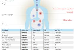 《柳叶刀》、NEJM两大顶级医学期刊发文:新冠病毒或致健康人新发糖尿病