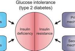 III期临床试验证明:Dorzagliatin单药治疗2型糖尿病疗效确切
