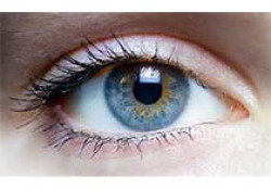 "Stroke:<font color=""red"">视网膜</font>中央动脉阻塞患者的静脉纤溶治疗"