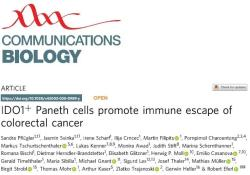 "Communications Biology:维也纳<font color=""red"">医科</font><font color=""red"">大</font>学:科学家确定一种新肠癌治疗方法"