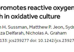 """<font color=""""red"""">Journal</font> of Cell Science:美国南加州大学研究表明,半乳糖可以帮助摧毁癌细胞"""