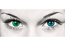 """粤陕合作研究""""AI医生"""" 1分钟内可诊断多种眼表疾病"""