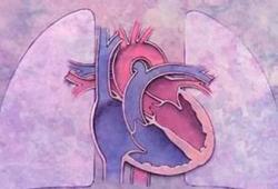 肺动脉高压该怎么用药?阜外医院经验