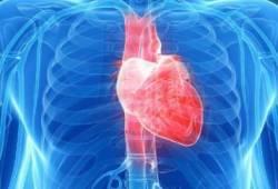 Am J Cardiol: 用多根动脉搭桥,可降低再次血管重建风险!美国Meta分析
