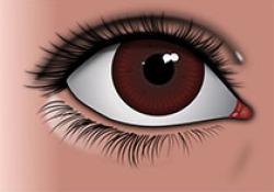 """针对遗传性视网膜营养不良的基因疗法SPVN06,获得欧洲孤儿<font color=""""red"""">药</font>称号"""