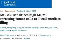 Cell Death Dis:布朗大学研究,药物治疗可提高癌症免疫疗法有效性