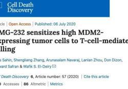 "Cell Death Dis:布朗大学研究,药物治疗可提高<font color=""red"">癌症</font>免疫<font color=""red"">疗法</font>有效性"