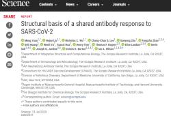 "Science:强效中和SARS-CoV-2的人类抗体,都具有这种""优秀""基因"