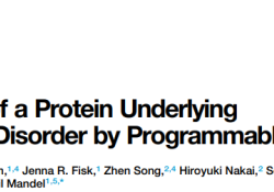 "Cell Rep:新突破,<font color=""red"">RNA</font>编辑可纠正蛋白突变,逆转神经系统疾病"