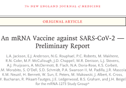 "NEJM:美国最早启动的新冠疫苗使<font color=""red"">受试者</font>均产生抗体,预防效果要观后效"