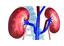 NEJM:肾脏替代治疗不能降低急性肾损伤危重患者的死亡风险
