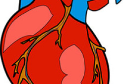 JAHA:心臟無創診斷試在門診心絞痛患者的應用