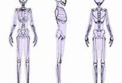 國產關節置換手術機器人助力醫生高水準完成手術 所有核心部件均國產
