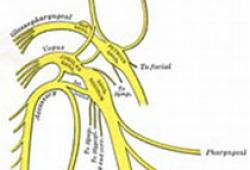 尺神經阻滯療法專家共識(2019版)