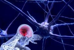 燈盞生脈膠囊整合干預卒中和認知障礙研究新進展