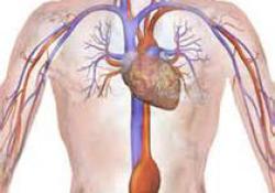 """打破国外垄断 中国自主研发的心血管OCT系统有何""""绝活""""?"""