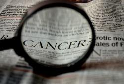 SCIENCE:腫瘤細胞為什么會進化出耐藥性?