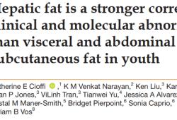 出来吃,迟早要还的!BMJ:脂肪肝更易诱发糖尿病、高血脂和高血压等心脏代谢疾病!