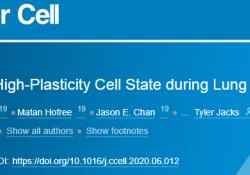 "cancer cell:新发现:高可塑性细胞状态揭示了癌细胞的<font color=""red"">耐药</font><font color=""red"">性</font>机制"