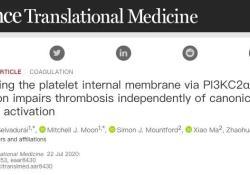 """Sci Trans med:澳大利亚科学家开发新药,可预防<font color=""""red"""">心血</font><font color=""""red"""">管</font>疾病,副作用大大降低"""