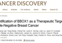 Cancer Dis:三阴性乳腺癌靶向治疗新突破!BBOX1基因是关键!