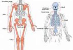 强直性脊柱炎/脊柱关节炎患者实践指南