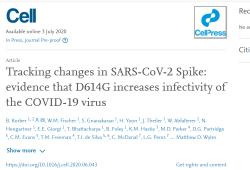 Cell:大流行中新冠病毒D614G普遍突變,感染滴度最高增加近10倍!