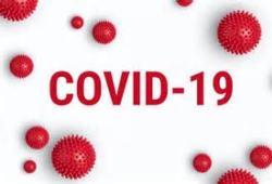 阻止SARS-CoV-2復制的潛在藥物:boceprevir和GC-376
