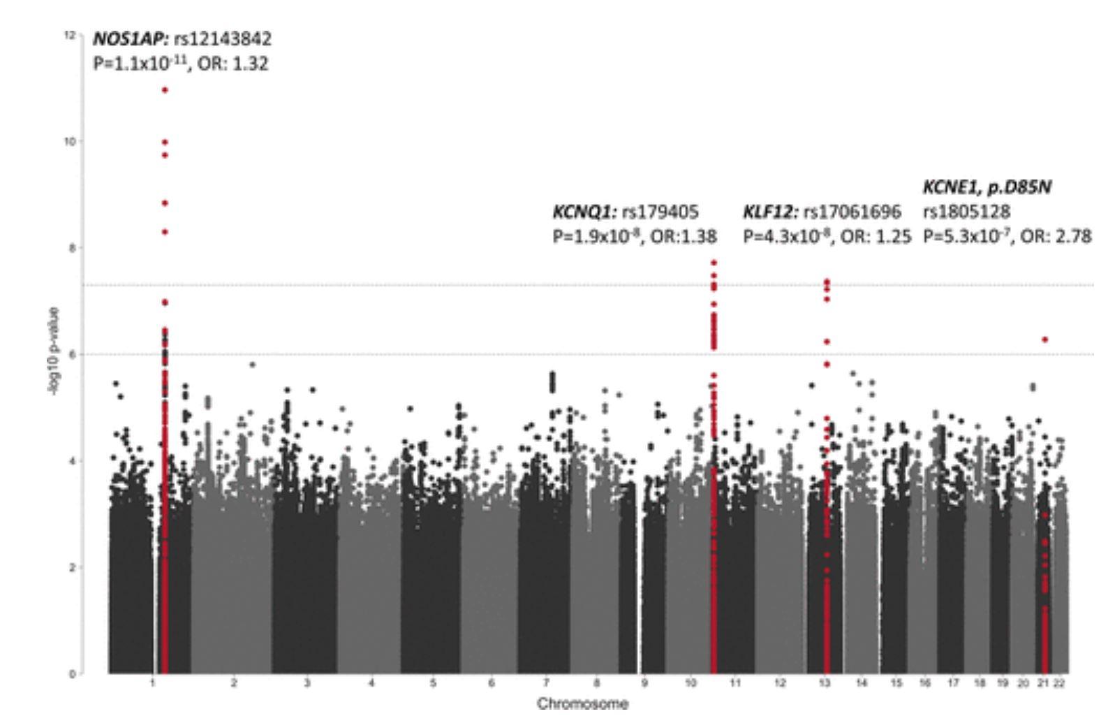 Circulation:长QT综合征的遗传结构和易感性